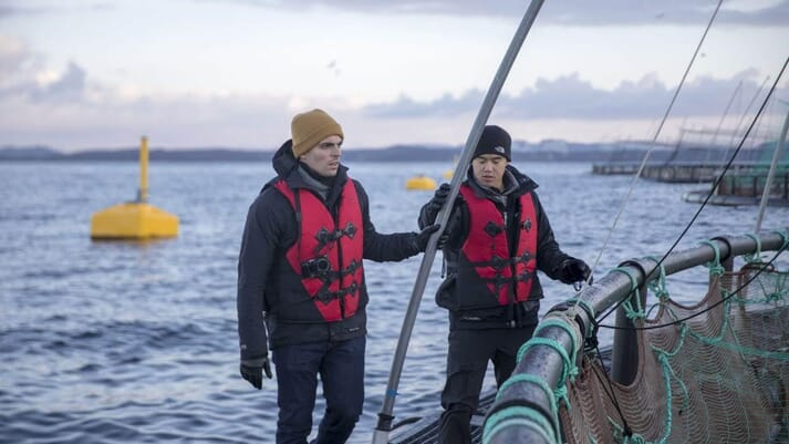 Manolin co-founders John Costantino (left) and Tony Chen (right) on a Norwegian salmon farm.