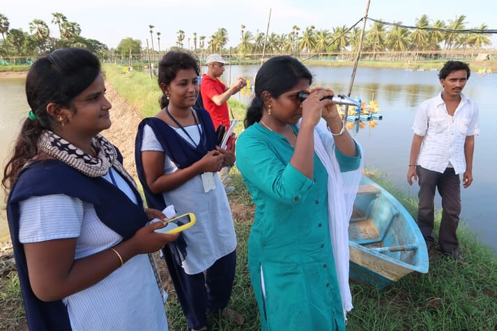 Students Amrutha Valli Narukurthi, Sabbathi Naga Vamsi Suhasini and Praveena Vardhanapu from Pithapur Rajah's College, Kakinada, assist the IMAQulate team with shrimp health surveys in Andhra Pradesh