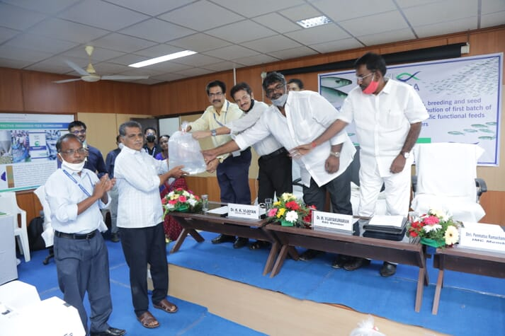 Indian aquaculture producers receive the country's first batch of hatchery-produced grey mullet