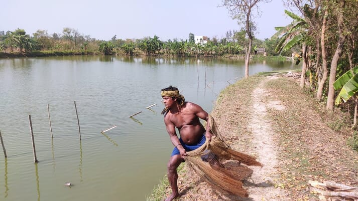 Preparing to sample fish, using a throw net, in a pond owned by Uttam Khatua, who has been a fish farmer in West Bengal for the past three decades