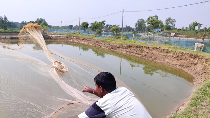 Rabindranath Bhuia has experienced mixed fortunes as a shrimp producer