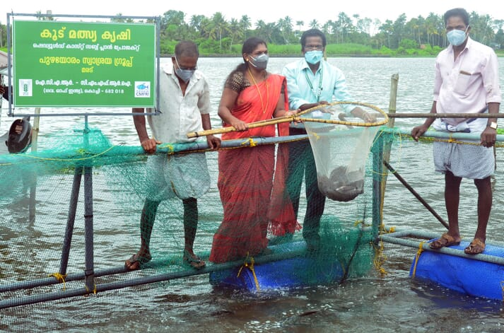 The cage farming project was part of a special programme of the Scheduled Caste Sub Plan (SCSP) of the ICAR-Central Marine Fisheries Research Institute (CMFRI)