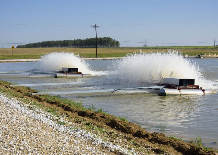 Aerators have helped farmers produce more catfish from their ponds - with some reporting figures as high as 22,000 lb per acre