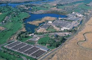 The BPC showed impressive results in trials at Clear Springs, the largest trout farm in the USA