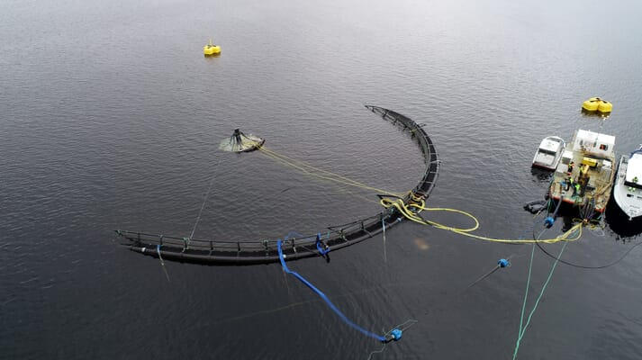 Atlantic Subsea Farms is using submersible pens in their operations