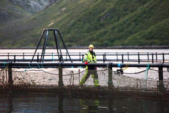 Norway Royal Salmon is selling of its six most southerly farms, which lie in the Haugesund area, in southwest Norway