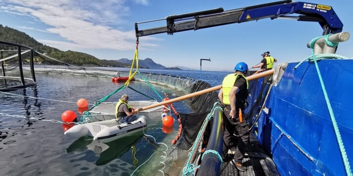 Trialling the use of echo-sound to estimate fish biomass at a salmon farm in Norway, September 2020