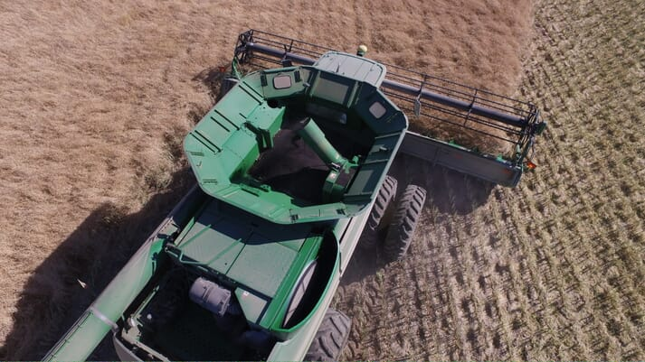 Nuseed's is currently harvesting 15,000 acres of GM canola in Montana