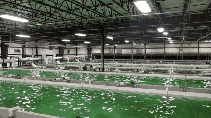 LocalCoho's proof-of-concept facility in upstate New York