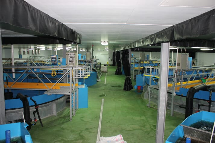 Cooke Aquaculture's RAS smolt production unit, Furnace.