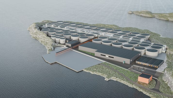 Salmon Evolution hopes to harvest its first fish in 2022