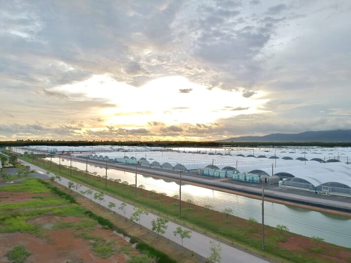 A huge, covered RAS shrimp production facility operated by CP Foods in Thailand