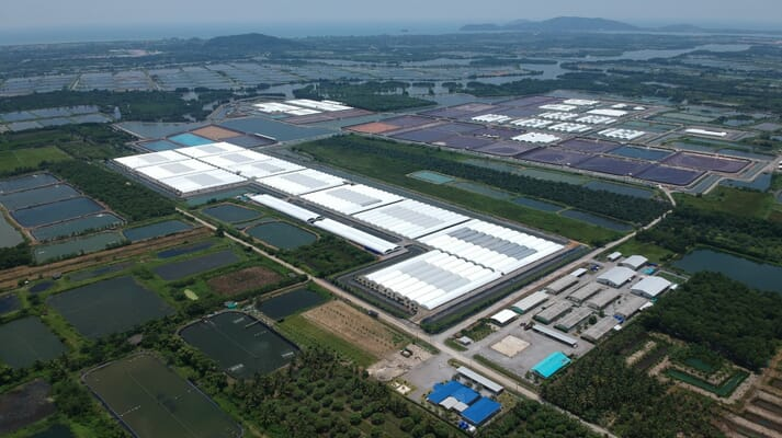 An aerial view of CP Foods' RAS-based shrimp production facility in Thailand