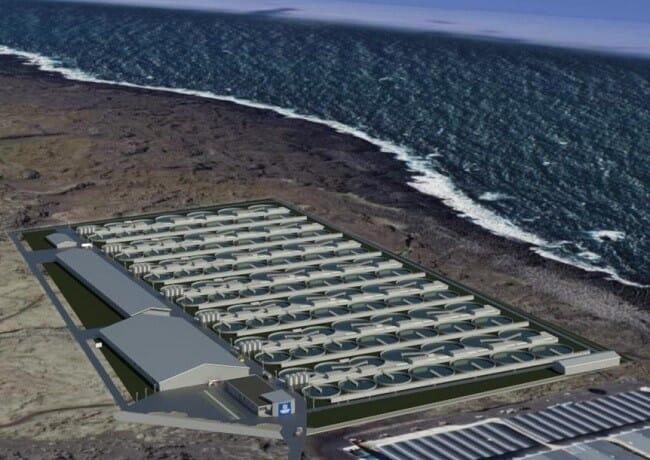 The preliminary plans for Samherji's 40,000-tonne salmon farm