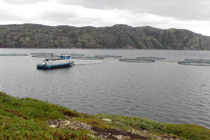 One of Russian Aquaculture's salmon grow-out sites, near Murmansk