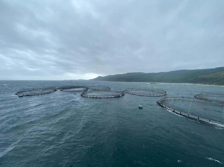 The Carradale North site, which contains 2,300 tonnes of salmon, has been secured until Storm Ellen subsides