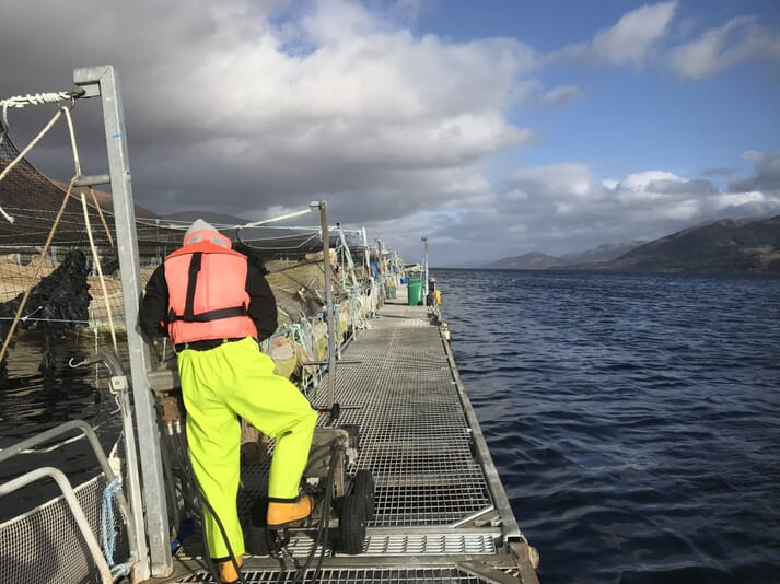 If not able to reach Muck, Clara will be able to experience working on other Marine Harvest sites, such as this one on Loch Linnhe