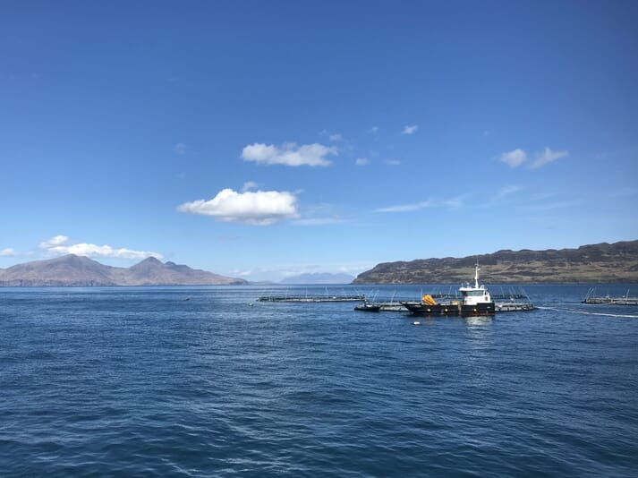 The Scalpay site will form the latest part of a series of high energy fish farms - such as those off Muck (pictured) and Rum - which Mowi has sited outside traditional sea loch locations