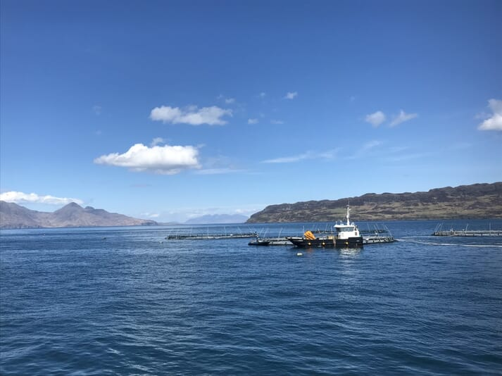 A classroom with a view: Mowi's salmon farm off Muck is set in a spectacular location