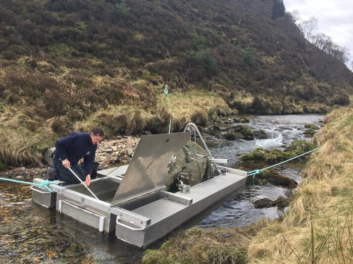 Smolts are caught and tagged using traps such as this one on the Upper Spey catchment