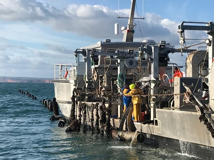 Offshore Shellfish, which aims to produce 10,000 tonnes of mussels a year, scooped two awards, including Best Aquaculture Business