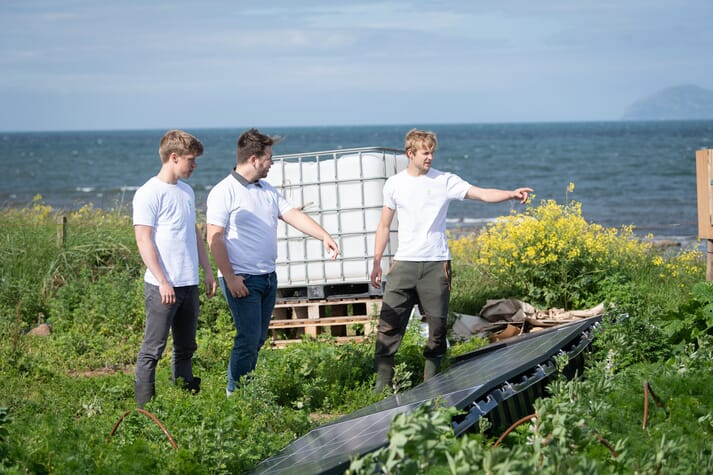 The company uses solar energy to pump the seawater onto the fields