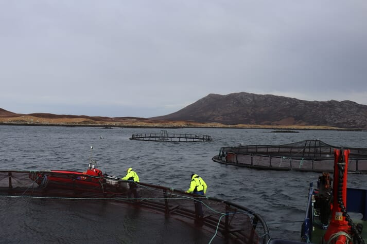 The Scottish Salmon Company's Eport site, on North Uist