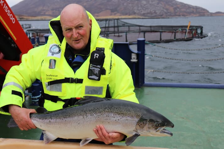 Donald MacInnes with one Scottish Salmon Company's Native Hebridean broodfish on site in Loch Eport, North Uist
