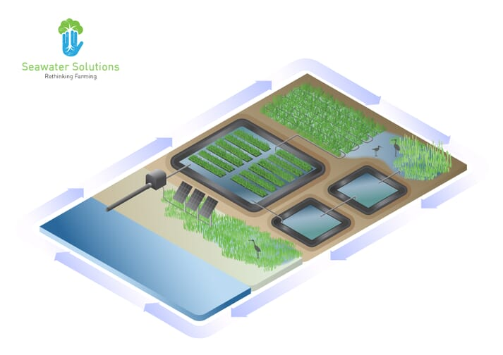 The company will look into reducing pollution from shrimp aquaculture in Vietnam, using the nutrient-rich wastewater to produce halophytes, which are among the best plant bio-remediators