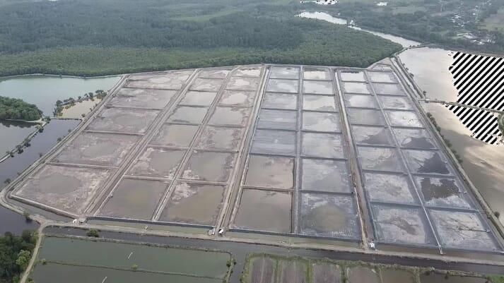Acuamaya hat seinen Standort in Mayasal 2005 in ein superintensives System umgewandelt
