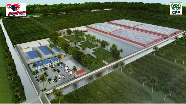CPF aims to produce up to 950 tonnes of shrimp a year at a 20 hectare site in the US