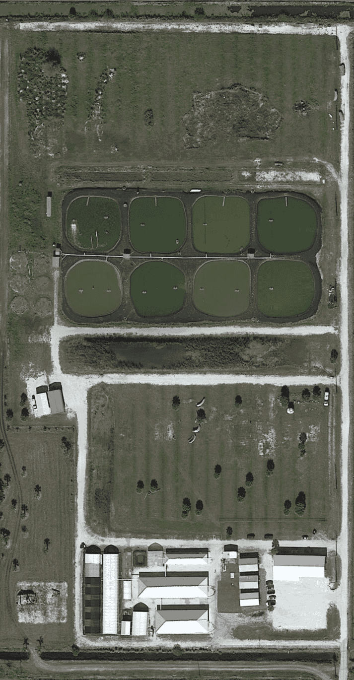 """""""Eight holes in the ground"""": the site before Homegrown Shrimp began to redevelop it"""
