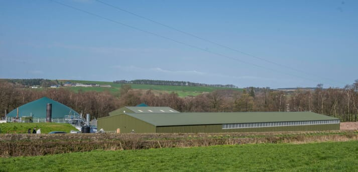 The site adjoins an anaerobic digestion (AD) plant, which provides cheap heat and electricity for the prawn farm