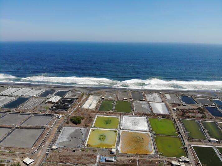 An aerial view of shrimp ponds