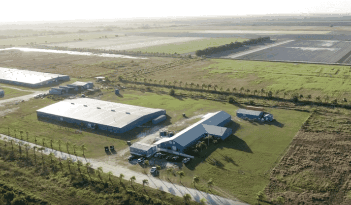 Benchmark's Florida facility has the capacity to produce 3 million production post-larval shrimp per month