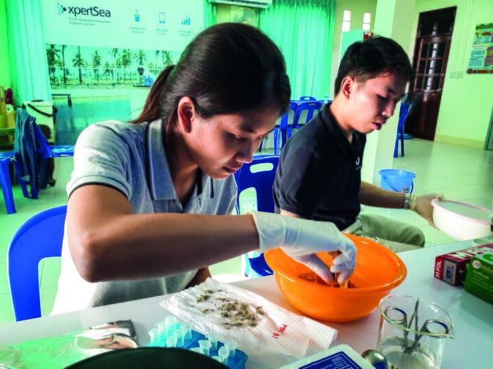 Two lab technicians examining shrimp larvae