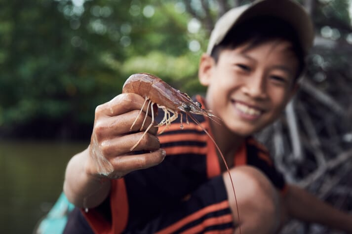 The Selva Shrimp initiative is set to be rolled out to parts of Indonesia, following its success in Southern Vietnam