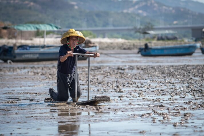 An oyster farmer in Deep Bay