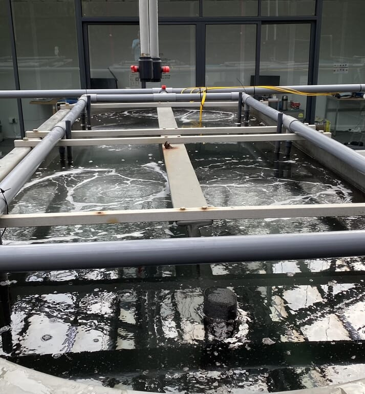 John Diener aims to produce shrimp, tilapia and seaweeds in five-tier facilities that can be fitted into the footprint of a standard warehouse