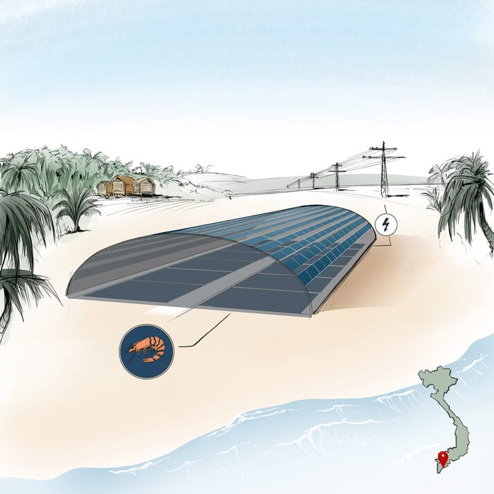 By providing shade, the solar modules integrated into the housing improve working conditions for the employees at the facility. They also offer protection from predators and maintain a lower water temperature enhancing shrimp growth