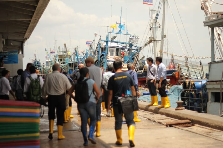 The Seafood Task Force has taken a tough approach to suspect practices in the Thai shrimp supply chain, including tackling social and environmental issues in the local reduction fishery fleet