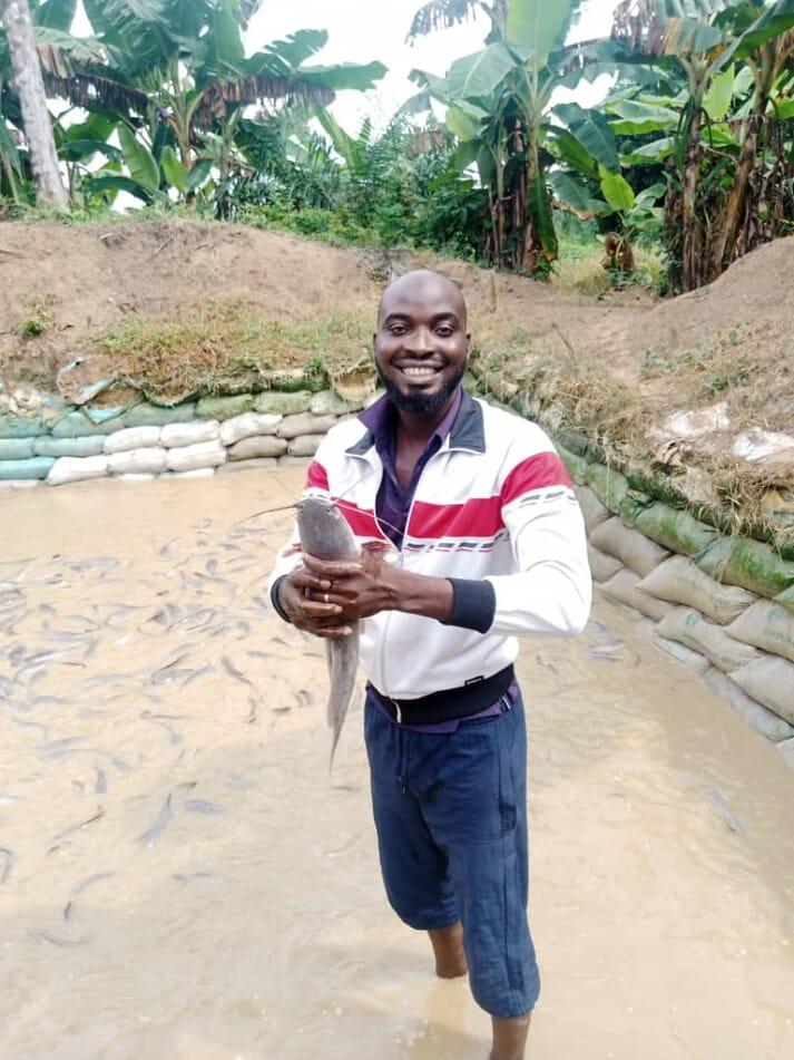 Ademola Adetola produces hybrid catfish in Nigeria