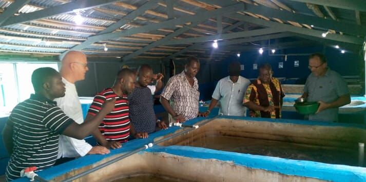 Participants discussed the potential of adding value to catfish and tilapia by innovative processing methods