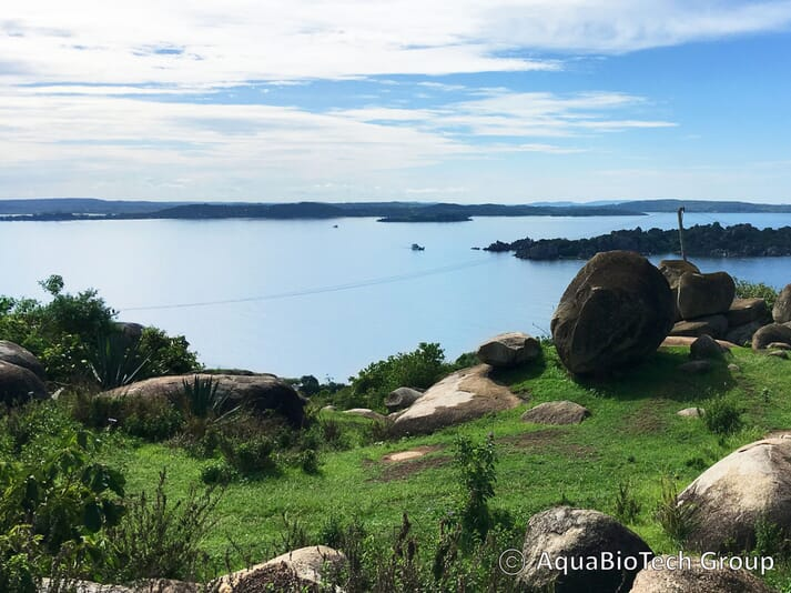 Lake Victoria, the second largest freshwater lake in the world, could benefit from more farmers using RAS