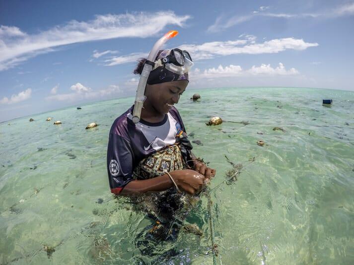 woman farming rope-grown sea sponges