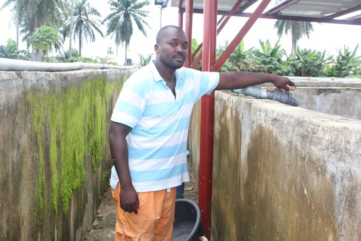 Greg Okagbue, farm manager at Ofanema247 Ventures