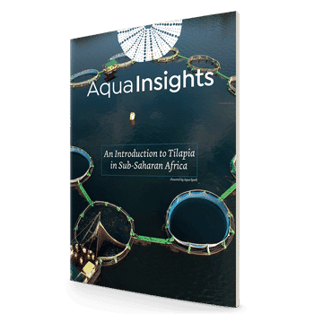 An Introduction to Tilapia in Sub-Saharan Africa: the first in Aqua-Spark's AquaInsights series