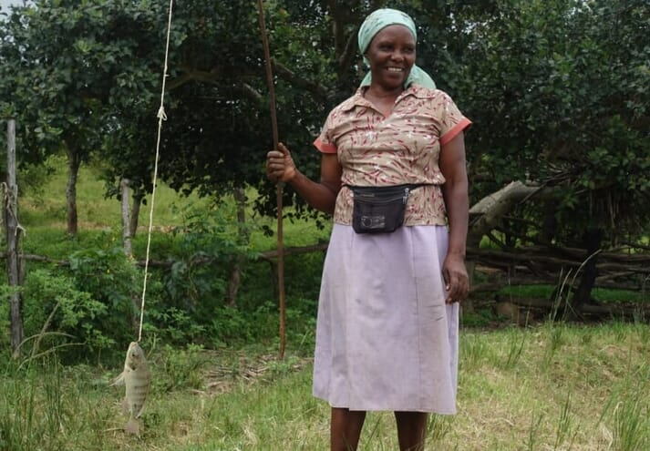 Egerine Maifa has found that home-grown ingredients such as the leaves of river tamarind and sweet potato have helped to cut her feed costs