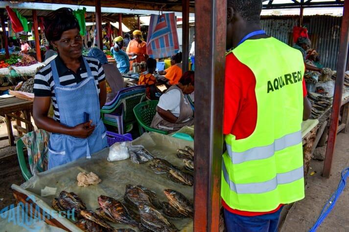 Aquarech connects Kenya's fish farmers and fish traders