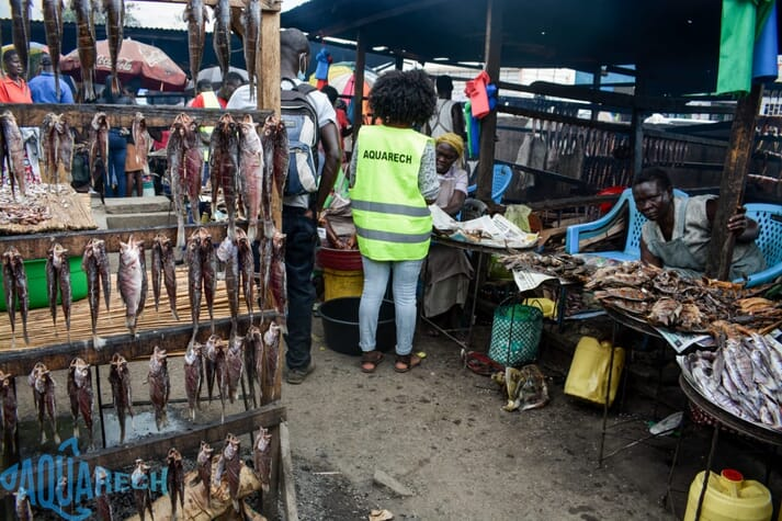 There is a strong market for locally-produced tilapia in Kenya